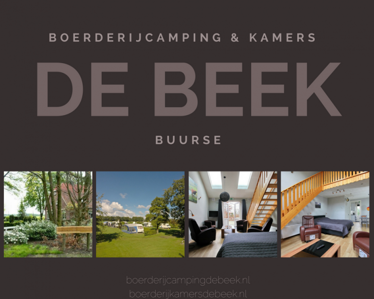 DeBeek logopagina